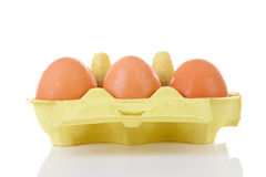 Chicken eggs in carton box Stock Images