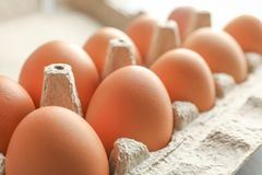 Chicken eggs in carton box as background royalty free stock photos
