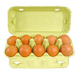Chicken eggs in carton tray Royalty Free Stock Photography