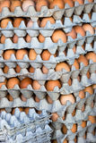 Chicken eggs in cartons. Dozens of eggs in an assortment of colors, stacked in cartons at the market Stock Photo