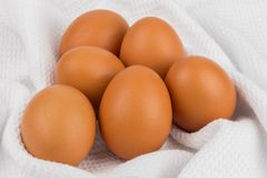 Chicken eggs on a checkered towel Stock Image