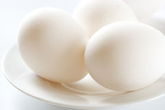 Chicken eggs close-up Stock Photography