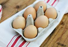 Chicken eggs. Closeup of fresh chicken eggs in egg carton box Royalty Free Stock Photography