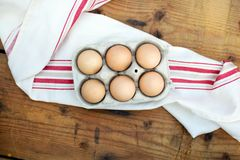 Chicken eggs. Closeup of fresh chicken eggs in egg carton box Stock Photos
