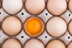 Chicken eggs closeup. homemade eggs chicken. Chicken eggs on the table. Cooking amlet. fresh eggs. the birth of little chickens royalty free stock photography