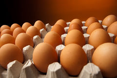 Chicken eggs in the container Royalty Free Stock Image