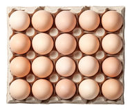 Chicken Eggs in Container Royalty Free Stock Images