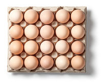 Chicken Eggs in Container Royalty Free Stock Photography