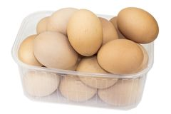 Chicken eggs in a container on a white background. Royalty Free Stock Image
