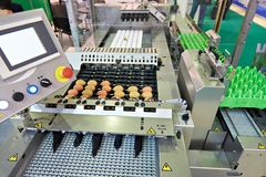 Chicken eggs on conveyor belt at food factory. Chicken eggs on a conveyor belt at a food factory Stock Photography