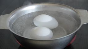 Chicken eggs are cooked in boiling water stock footage