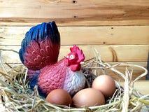 Chicken and eggs Stock Photos