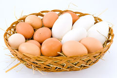 Chicken eggs and duck Royalty Free Stock Photo