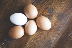 Chicken eggs Royalty Free Stock Image