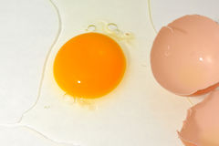 Chicken eggs. Egg yolks and whole eggs store significant amounts of protein and choline,and are widely used in cookery. Due to their protein content, the United Royalty Free Stock Photos