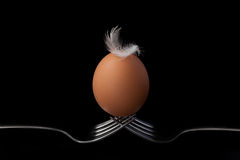 Chicken eggs on fork still life on black background Stock Photography