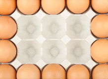 Chicken eggs frame Stock Image