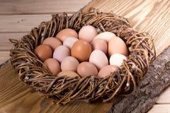 Chicken eggs. Fresh chicken eggs in a nest stock image