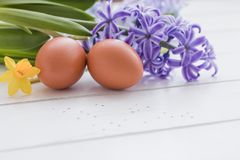 Chicken eggs and fresh violet and pink hyacinths and yellow daffodil on the white background. Easter postcard concept. Royalty Free Stock Photo