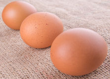 Chicken Eggs On Gunny Sack XI Stock Images