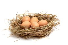Chicken Eggs In A Hay On A White . Royalty Free Stock Photography