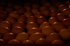 Chicken eggs in an incubator Royalty Free Stock Photography