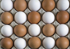 Chicken eggs, laid in a staggered manner in the container Stock Photography