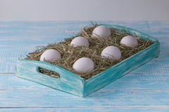 Chicken eggs. Chicken eggs in the manger in the decorated tray Royalty Free Stock Photography