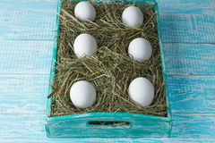 Chicken eggs. Chicken eggs in the manger in the decorated tray Royalty Free Stock Photo