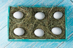 Chicken eggs. Chicken eggs in the manger in the decorated tray Stock Photography