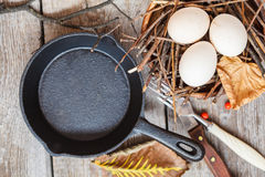 Chicken eggs in the nest Stock Image