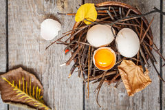 Chicken eggs in the nest Royalty Free Stock Photo