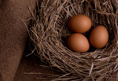 Chicken eggs in nest on burlap background Royalty Free Stock Photo