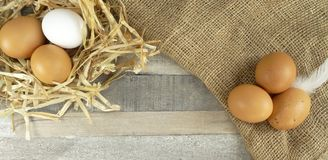 Chicken eggs in nest with burlap over wooden background. Chicken eggs in nest with straw and feather and burlap over natural wooden background/for nice Easter stock photography