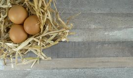 3 Chicken eggs in nest with over wooden background. 3 Chicken eggs in nest over natural wooden background/ decoration for easter,restaurant,spring,life,basic royalty free stock photos