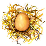 Chicken eggs in the nest of straw. Royalty Free Stock Photography