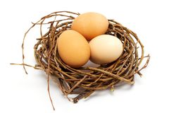 Chicken eggs in nest on white background, easter concept stock images
