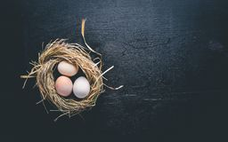 Chicken eggs in the nest. Wooden photo on a black background. Royalty Free Stock Photos