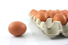 Chicken eggs in paper Pane on white background Stock Photos