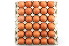 Chicken eggs in paper Panel topview Stock Photo