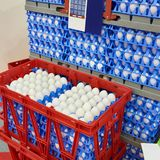 Chicken eggs in plastic boxes at food factory. Chicken eggs in plastic boxes at the food factory Royalty Free Stock Photos