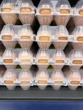 Chicken eggs in plastic packing in the store. Studio Photo Royalty Free Stock Images