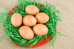 Chicken eggs in plate, arranged and decorated with grass Royalty Free Stock Photo