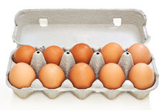 Chicken eggs in pulp egg carton Stock Photography