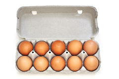 Chicken eggs in pulp egg carton Royalty Free Stock Image