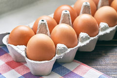 Chicken eggs in pulp egg carton Stock Image