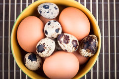 Chicken eggs and quail eggs Royalty Free Stock Photo