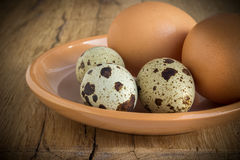 Chicken eggs and quail Royalty Free Stock Photography