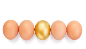 Chicken eggs in a row. Royalty Free Stock Image