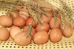 Chicken eggs and rye ears Royalty Free Stock Photography